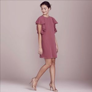 NWT LC Lauren Conrad Shift Dress w/ Ruffle Sleeves